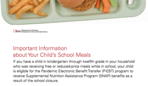 Summer Meals: Pandemic Electronic Benefit Transfer (P-EBT) Program